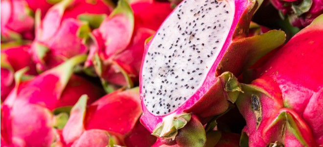 The Rise of Exciting DRAGONFRUIT